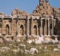 Side Ruines